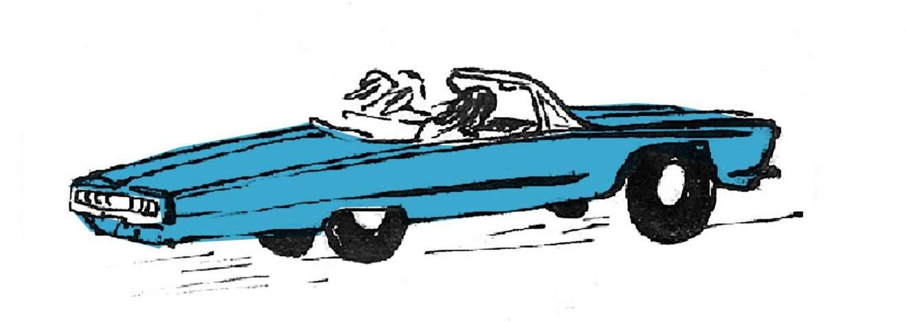 voiture-heylouise(1)