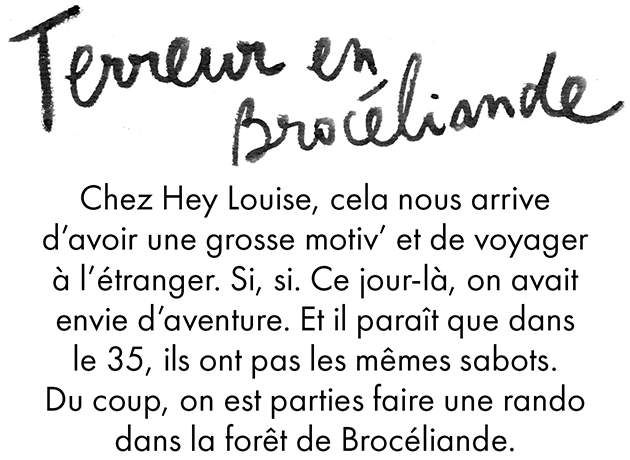 BD-Broceliande-HeyLouise1